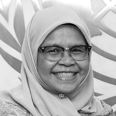 Executive Director of UN‑HABITAT
