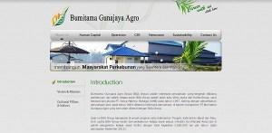 [Kalimantan Barat] Lowongan Kerja Operator Pabrik Kelapa Sawit di PT Bumitama Gunajaya Agro (Oktober 2015)