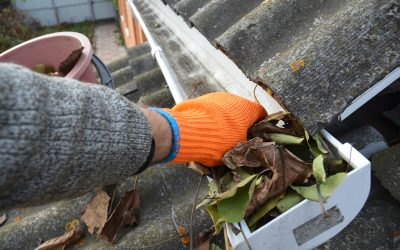 Protect Your Roof With Gutter Inspections