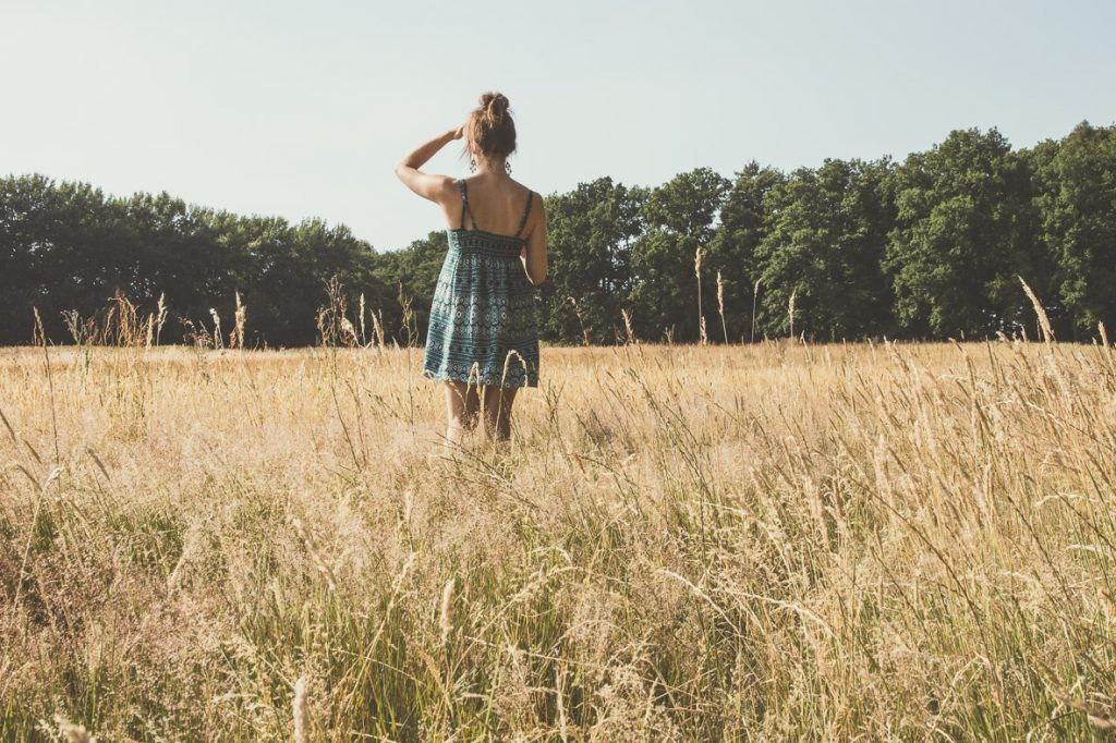 Wheat during summer, portrait pictures