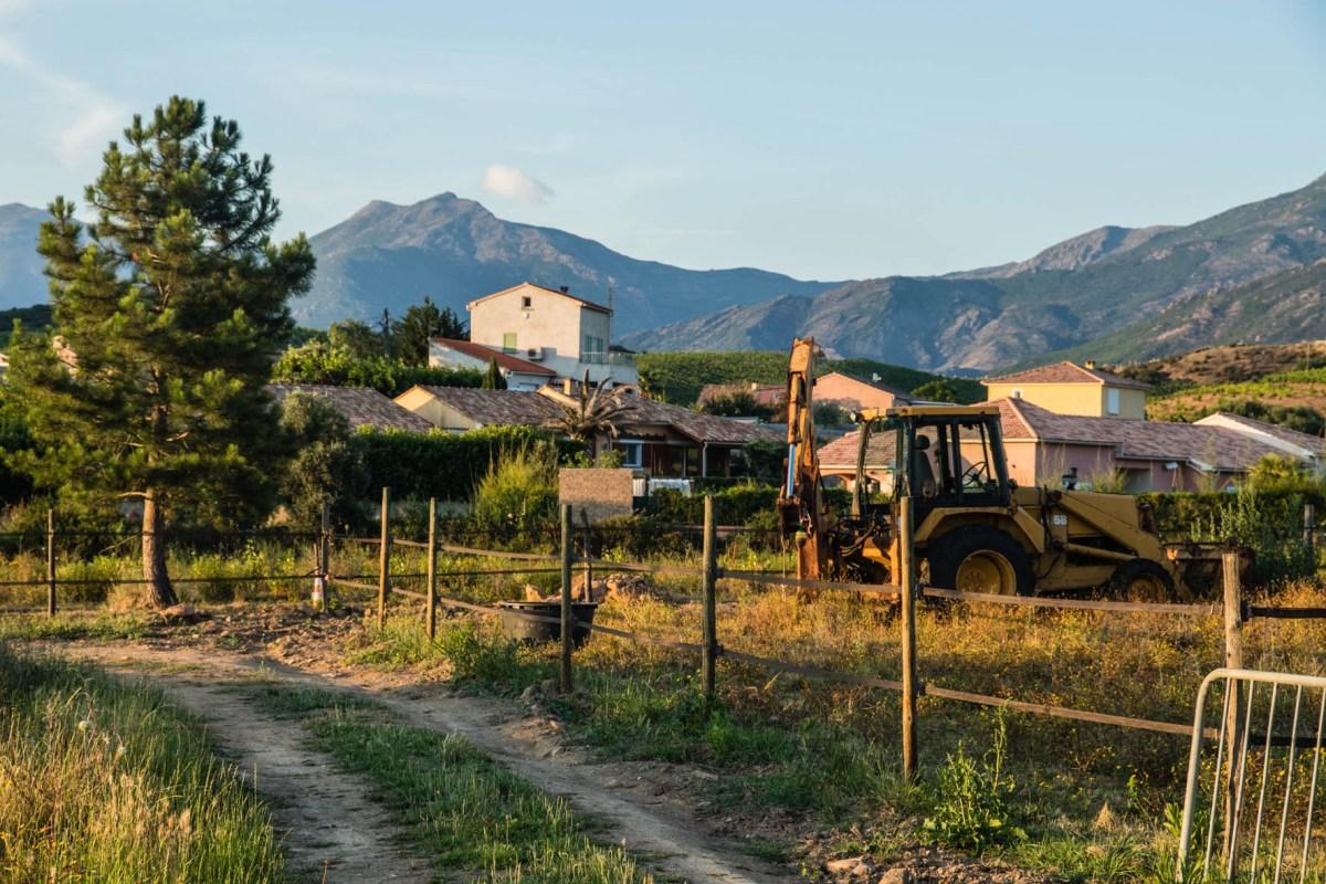 Oletta, vineyard in Corsica. Wijngaarden.