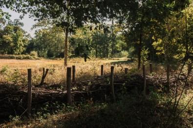 Domein Bovy. De Wijers. Heusden-Zolder, Limburg.