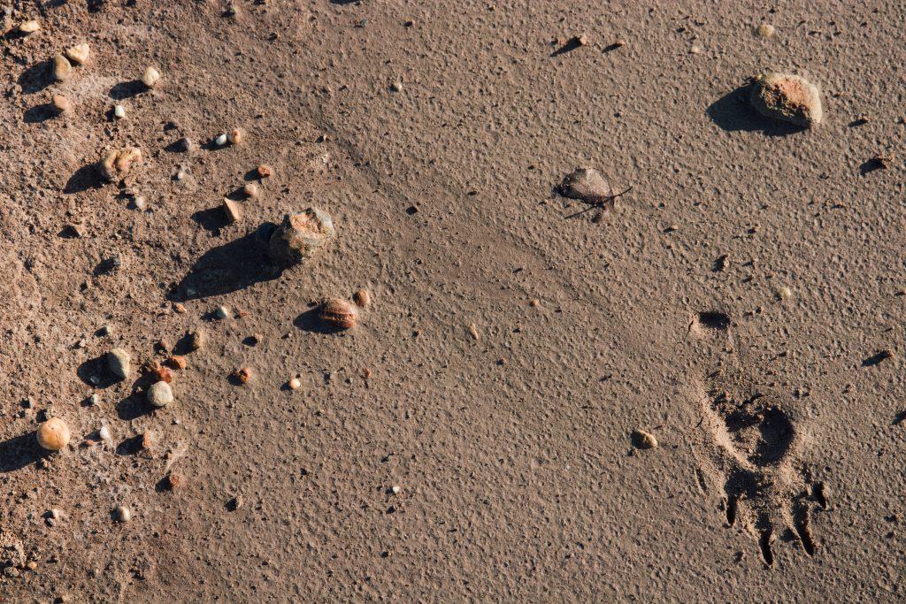 Leemgrond in Bilzen. Mijnen.