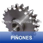 PIÑONES WWW.SOLMINSA.COM TELEFONO 2522207