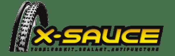 logo X-sauce