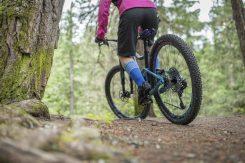 Pique Mountain Bike