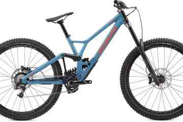 Specialized Demo 29