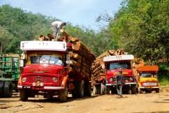 Transporte Malasia