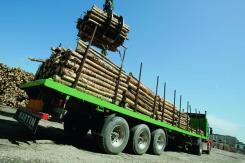 259-profesión-madera-19