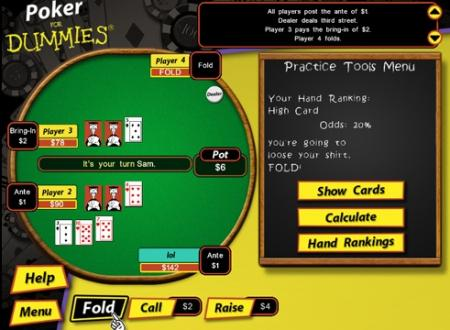 pokerdummies2.jpg
