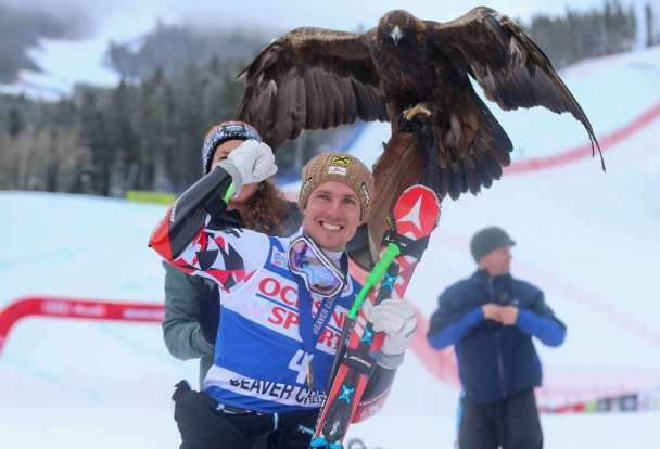 BEAVER CREEK,COLORADO,USA,05.DEC.15 - ALPINE SKIING - FIS World Cup, Super G, men, award ceremony. Image shows the rejoicing of Marcel Hirscher (AUT) and an eagle. Photo: GEPA pictures/ Christian Walgram