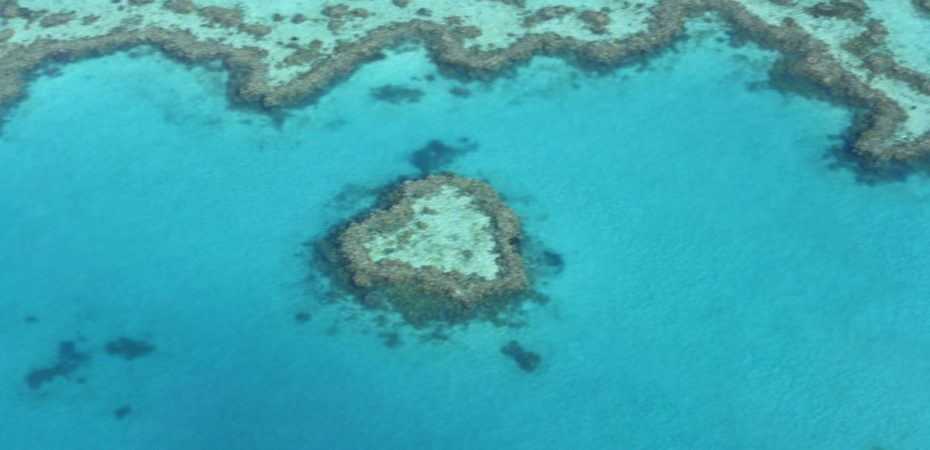 The Heart Reef