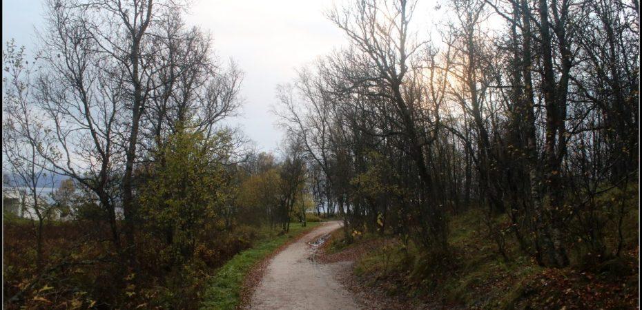 The muddy path - Tromso