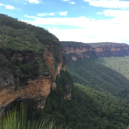 Guide | Valley of the Waters walk (Blue Mountains)