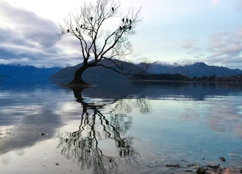 1 day in Wanaka!