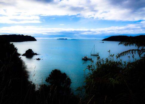 Stewart Island – Complete guide