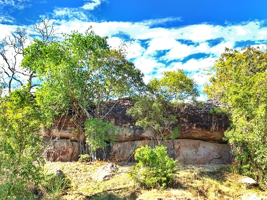 day trips from Darwin