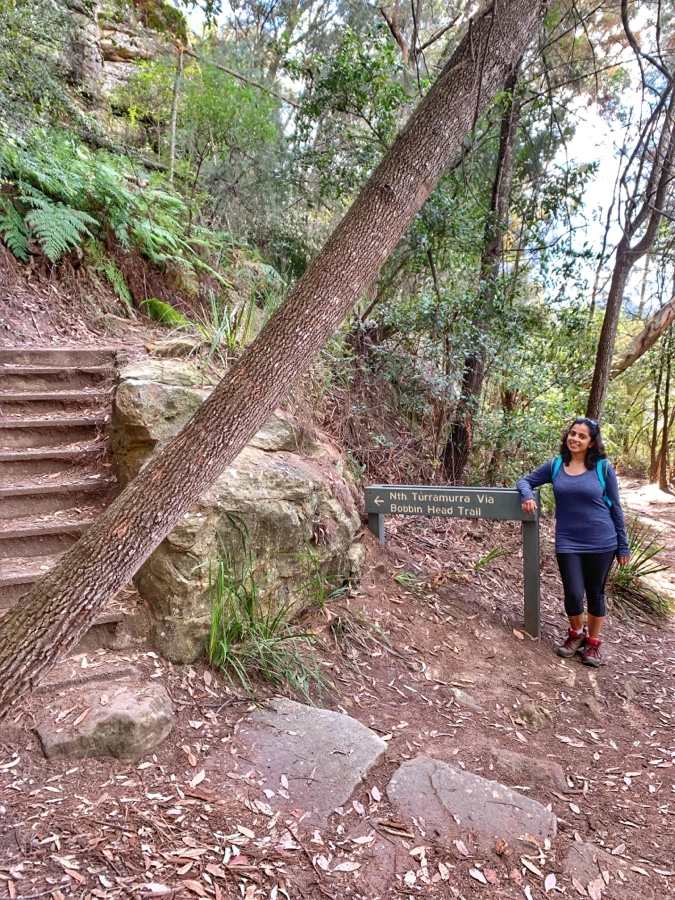 Ku-ring-Gai national park - Bobbin Head Track