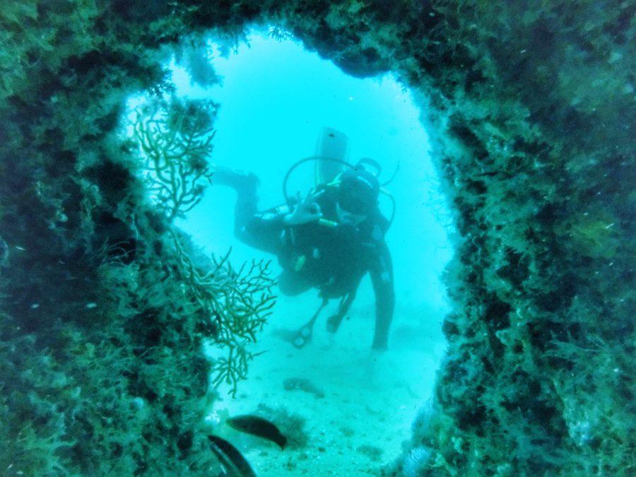 Sesimbra scuba diving