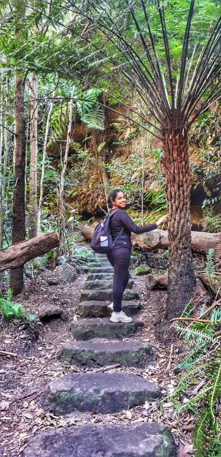 The Grand Canyon Walk (Blue Mountains)