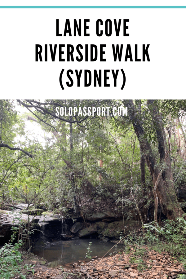 Lane Cove Riverside Walk