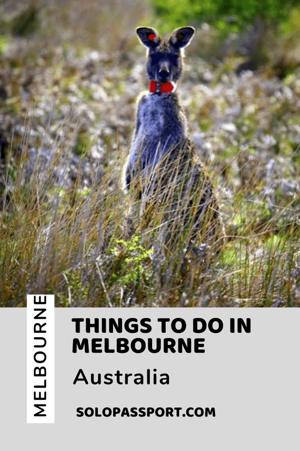 PIN for later reference - Things to do in Melbourne