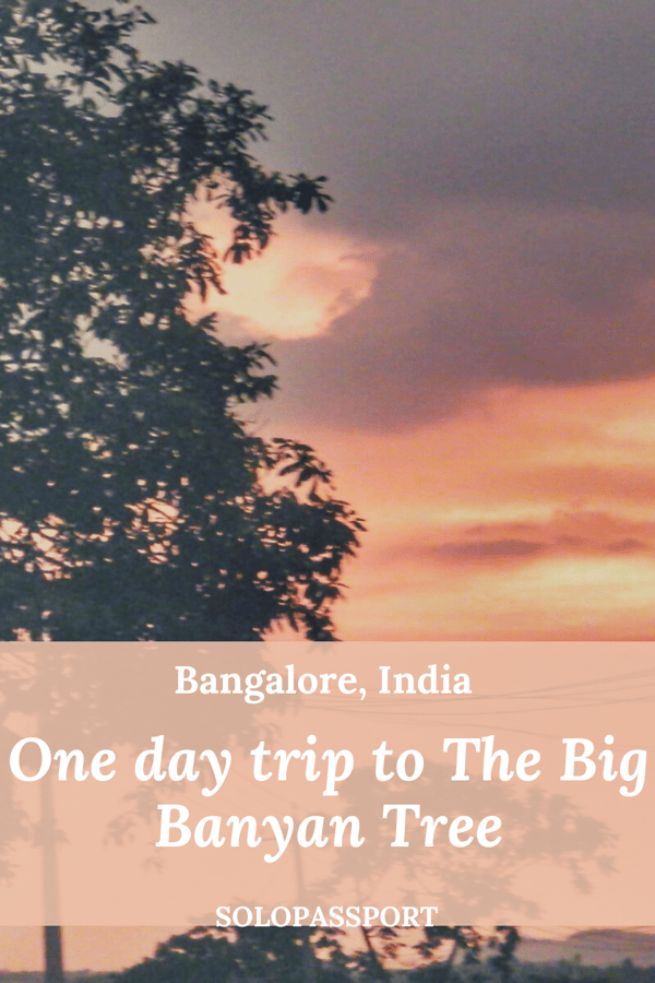 PIN for later reference - One day trip to The Big Banyan tree (Dodda Alada Mara)