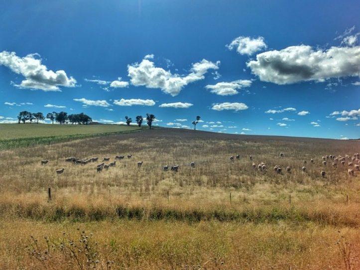 Train journey to Broken Hill