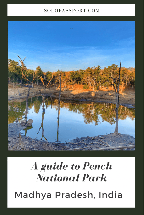 PIN for later reference - A guide to Pench National Park