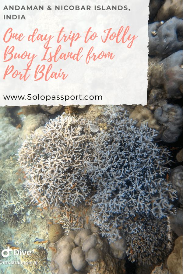 PIN for later reference - One day trip to Jolly Buoy Island from Port Blair
