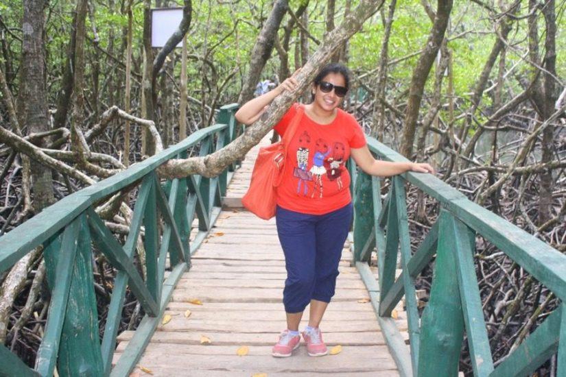 Mangrove forests at Baratang island