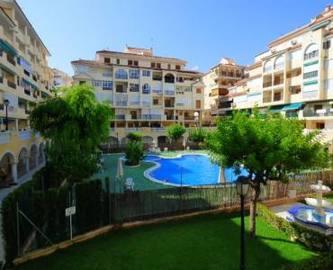 Torrevieja,Alicante,España,1 BañoBathrooms,Pisos,14187