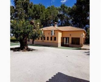 Pedreguer,Alicante,España,3 BathroomsBathrooms,Local comercial,15065