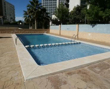 Benidorm,Alicante,España,1 Dormitorio Bedrooms,2 BathroomsBathrooms,Apartamentos,24340