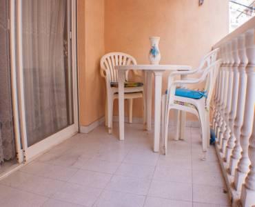 Torrevieja,Alicante,España,1 Dormitorio Bedrooms,1 BañoBathrooms,Apartamentos,24611