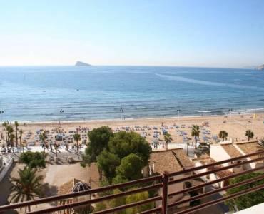 Benidorm,Alicante,España,1 Dormitorio Bedrooms,1 BañoBathrooms,Apartamentos,24716