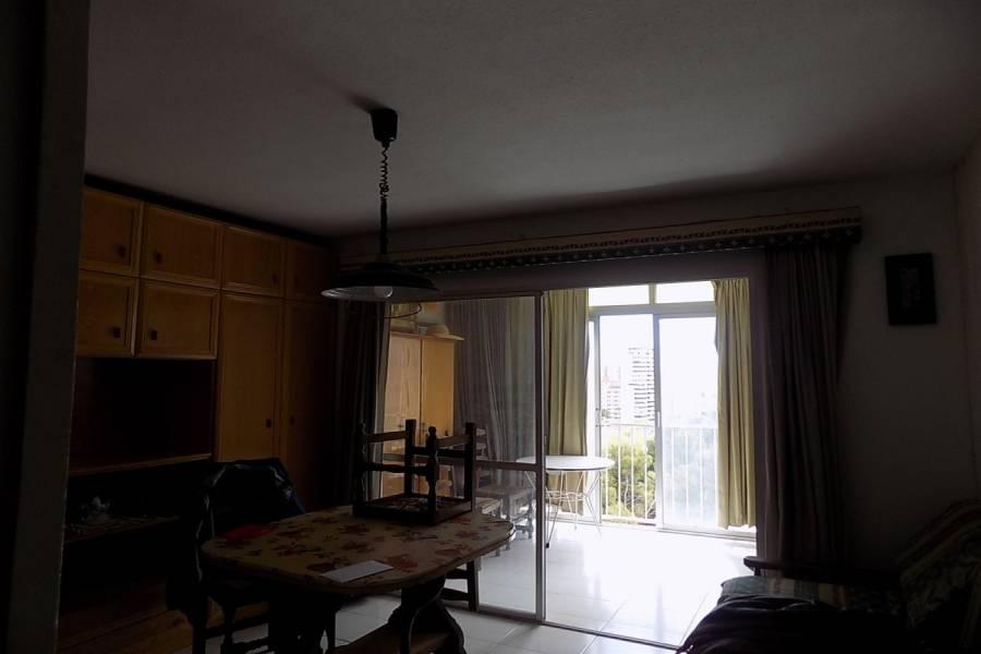 Benidorm,Alicante,España,1 Dormitorio Bedrooms,1 BañoBathrooms,Apartamentos,24754