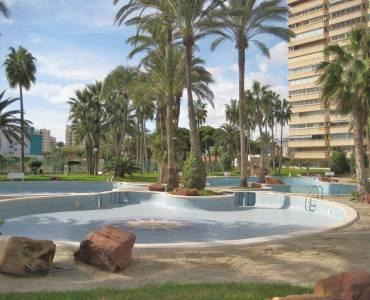 el Campello,Alicante,España,3 Bedrooms Bedrooms,2 BathroomsBathrooms,Apartamentos,24842