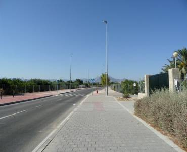 Mutxamel,Alicante,España,Lotes-Terrenos,24861