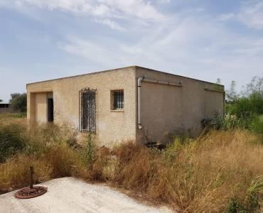 Elche,Alicante,España,Casas,24949
