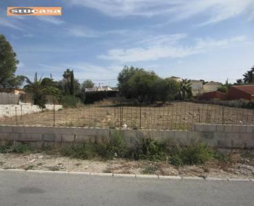 Busot,Alicante,España,Lotes-Terrenos,25041