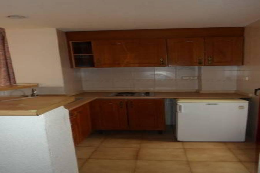 Benidorm,Alicante,España,1 Dormitorio Bedrooms,1 BañoBathrooms,Apartamentos,25450