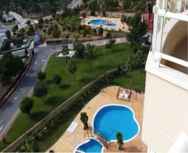 Benidorm,Alicante,España,1 Dormitorio Bedrooms,1 BañoBathrooms,Apartamentos,25561