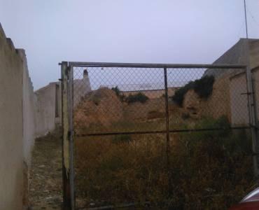 Crevillente,Alicante,España,Lotes-Terrenos,26869
