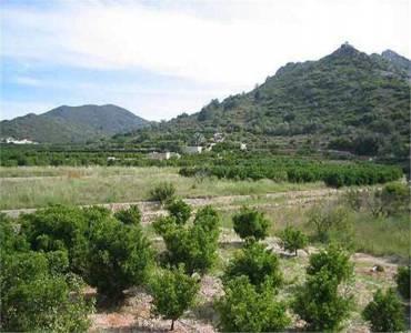 El Rafol d'Almunia,Alicante,España,4 Bedrooms Bedrooms,2 BathroomsBathrooms,Casas,30367