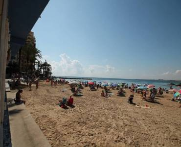 Torrevieja,Alicante,España,3 Bedrooms Bedrooms,2 BathroomsBathrooms,Planta baja,34383