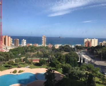 Benidorm,Alicante,España,1 Dormitorio Bedrooms,1 BañoBathrooms,Apartamentos,34538