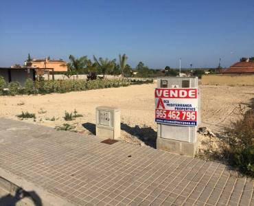 Elche,Alicante,España,Parcela,34582