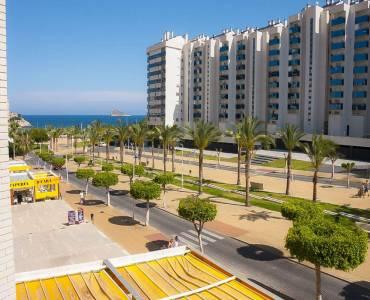 Benidorm,Alicante,España,1 Dormitorio Bedrooms,1 BañoBathrooms,Apartamentos,39609