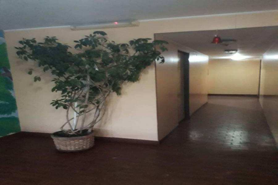 Santa Teresita, Buenos Aires, Argentina, 1 Dormitorio Bedrooms, ,1 BañoBathrooms,Apartamentos,Alquiler-Arriendo,39,3,40900